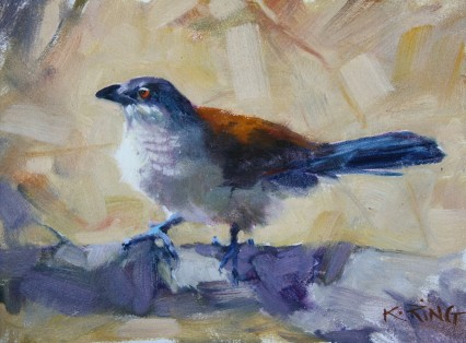 Coucal 6x8in