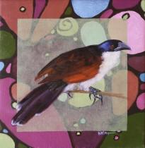 Circle Birds 2011