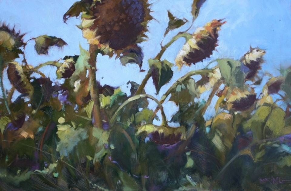 Mutigliano, drying sunflowers 40x60cm