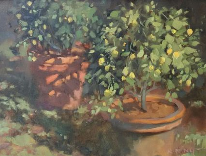 K. Ring Vasi di Limoni, 30x40cm