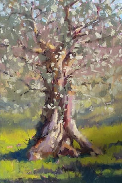 Portrait of an Olive Tree 30x20cm